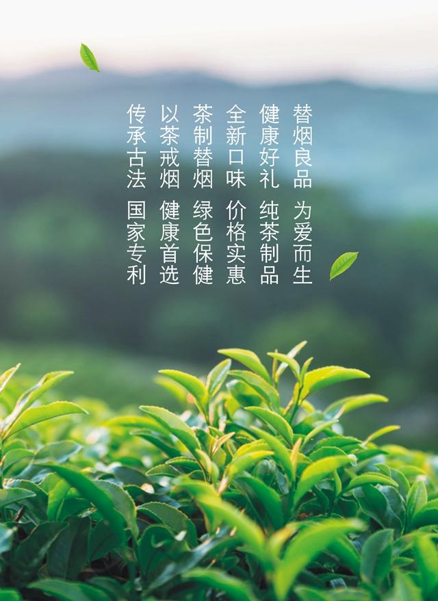 大红袍详情(切片(导出2.jpg