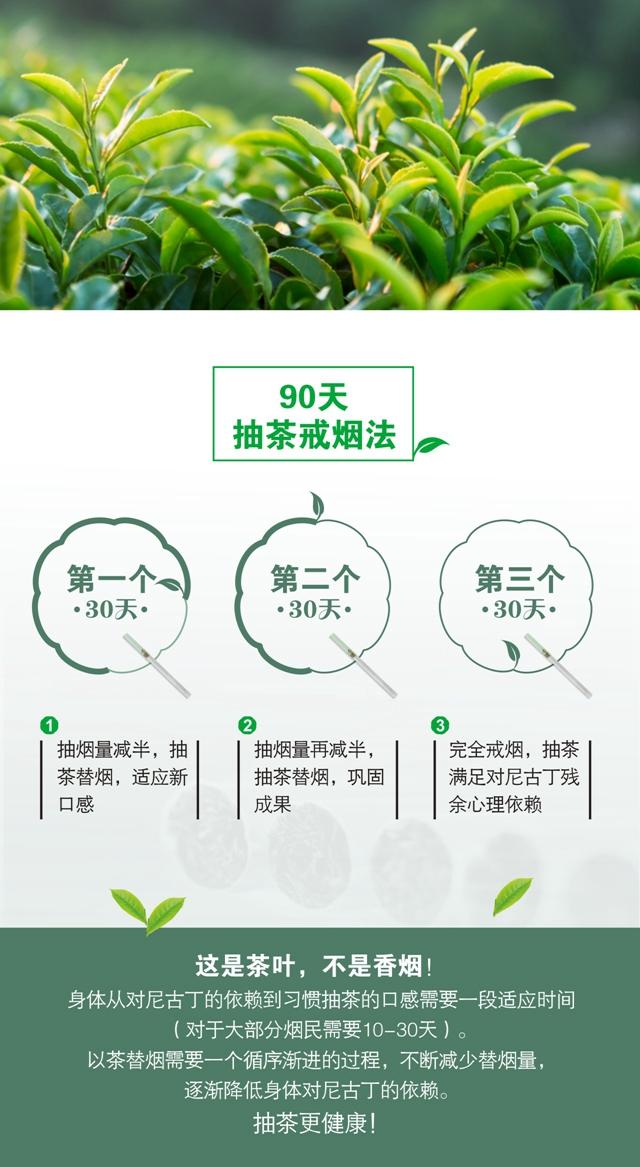 茶马古道铁观音-详情(导出)08.jpg